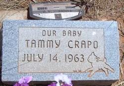 Tammy Crapo