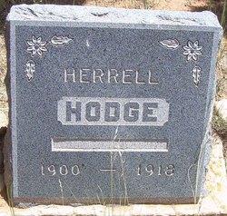 Herrell Hodge