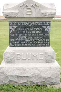 Hermann Blume