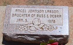 Angel Johnson Larson