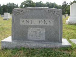 Henry Albert Anthony