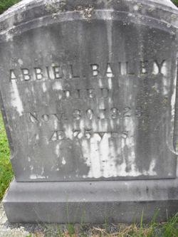Abbie L. Bailey