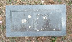 Alfred Ferdinand Burns