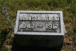Alanson Butler Treat