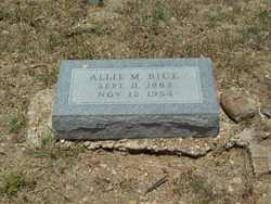 Allie Mae <I>Locklin</I> Bice