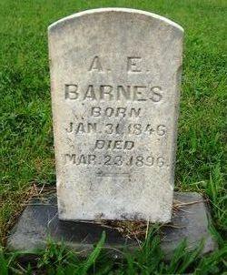 A. E. Barnes