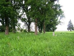 Anderson Bottoms (Pierce) Cemetery