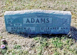 Eleanor Ann <I>Collins</I> Adams