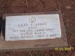 Lilly Tillahash Asket