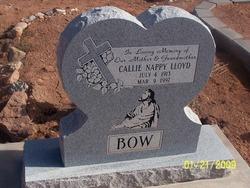 Callie Nappy <I>Bow</I> Lloyd