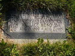 Wallace Mono Iba