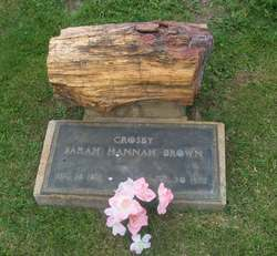 Sarah Hannah <I>Brown</I> Crosby