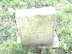 Elmer Joe Northern