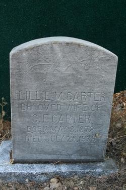 Lillie M Carter