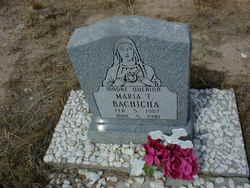 Maria T Bachicha