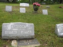 Lee Alfred Amidon