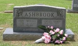 Julia Fredonia <I>Langston</I> Ashbrook