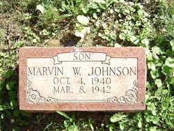 Marvin W Johnson