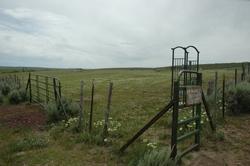 Kilgore Cemetery #1