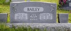 Ellis Allen Bailey