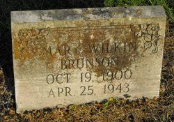Mary <I>Wilkin</I> Brunson
