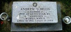 Pvt Andrew D Bellis