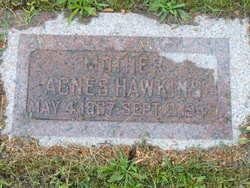 Agnes Amelia <I>Peterson</I> Hawkins