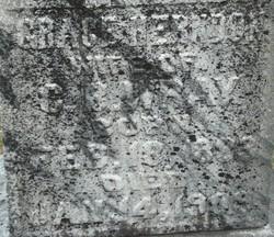 Anna Grace <I>Herndon</I> Wray