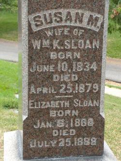 Susan M Sloan