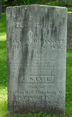 Susan E Bassett