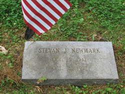 Stevan J Newmark