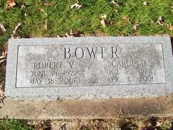 "Mary Caroline ""Carol"" <I>Danforth</I> Bower"