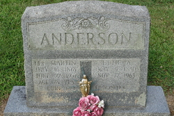 Lee Martin Anderson