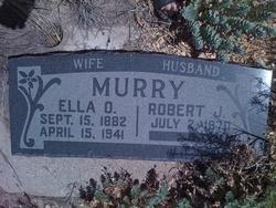 Robert J Murray