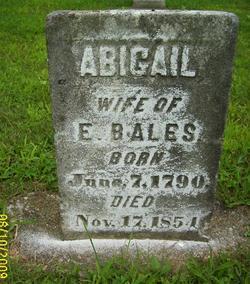 Abigail Bales