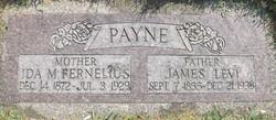 Ida Matilda <I>Fernelius</I> Payne