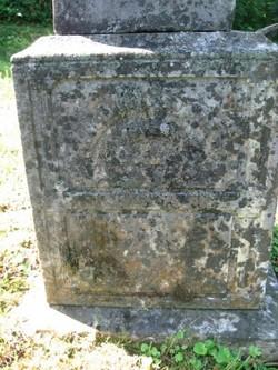 William Thomas Stout Jr.