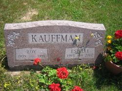 Estelle A <I>Mesecar</I> Kauffman