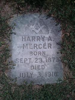 Harry A Mercer
