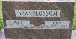Leo Allen Beanblossom