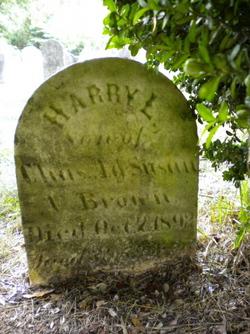 Harry L Brown