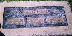 Sarah Jane <I>Rogers</I> Burgess