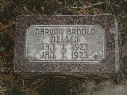 Darwin Arnold Nelson
