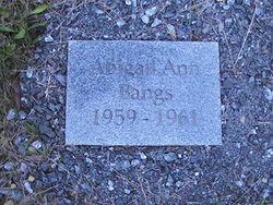 Abigail Ann Bangs