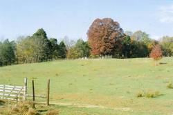 Dupree Cemetery