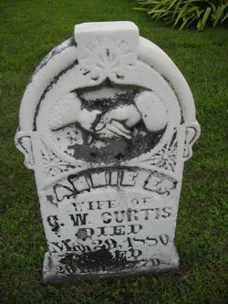 Annie E. <I>Talkington</I> Curtis