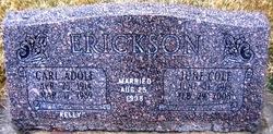 Carl Erickson