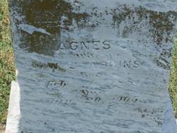 Agnes J. Adkins
