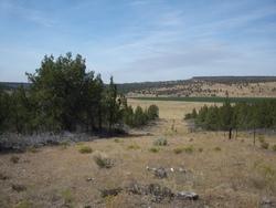 John Ellsworth McCoy Burial Site
