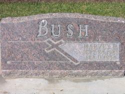Harvey Robert Bush